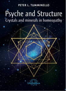 front cover of Psyche and Structure